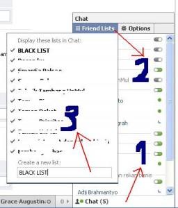 menyembunyikan status online di facebook