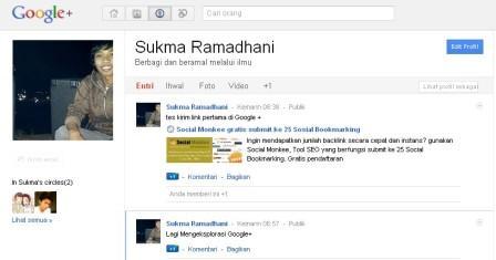 Tampilan Halaman Profil Google +