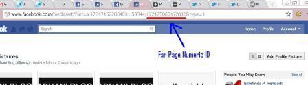 Fan Page ID