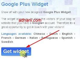widget googleplus