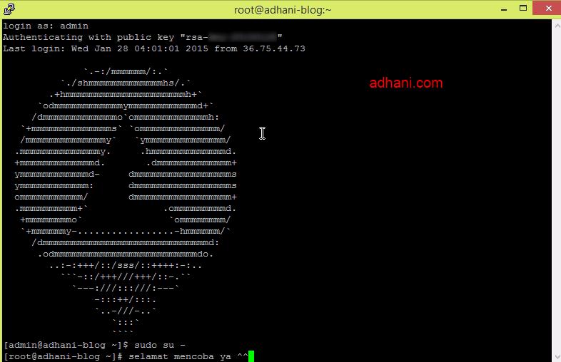 login server VPS RunAbove menggunakan Putty