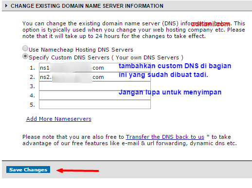 setting dns di namecheap